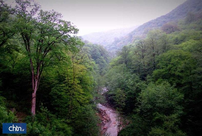 تابلوهای دوزبانه برای معرفی جنگل های هیرکانی در خراسان شمالی نصب می شود