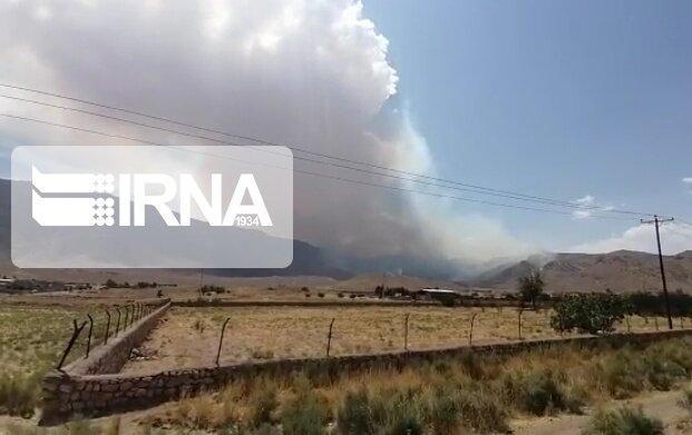 خبرنگاران 173 هکتار از مناطق تحت مدیریت حفاظت محیط زیست کردستان دچار حریق شد