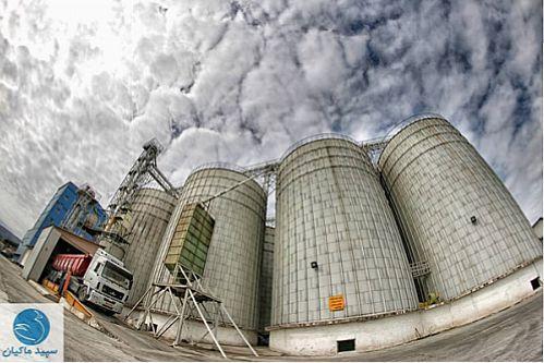 حمایت 1050 میلیاردی بانک کشاورزی از بزرگ ترین طرح زنجیره تولید و توزیع مرغ گوشتی کشور در گیلان