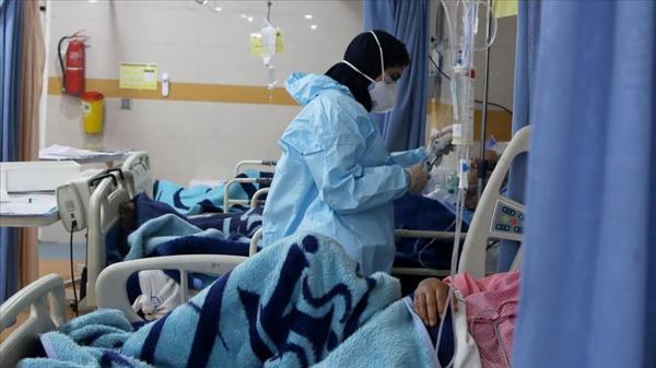 فوتی کرونا در بوشهر رکورد زد